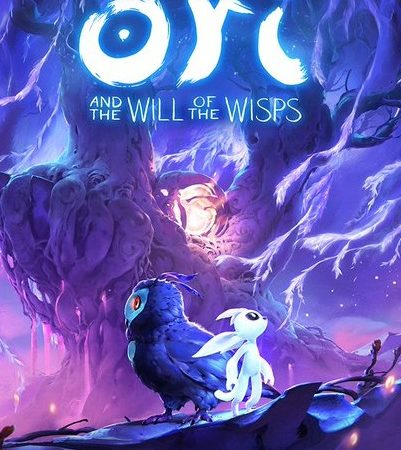 Ori and the Will of the Wisps cracked