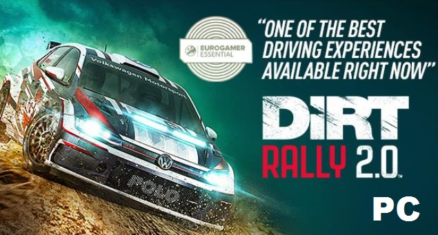 DiRT Rally cracked