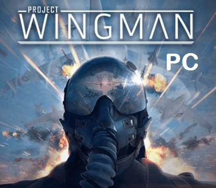 Project Wingman cracked pc